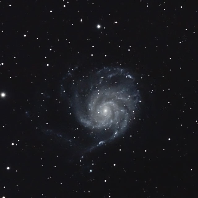 M101 (FLT98)