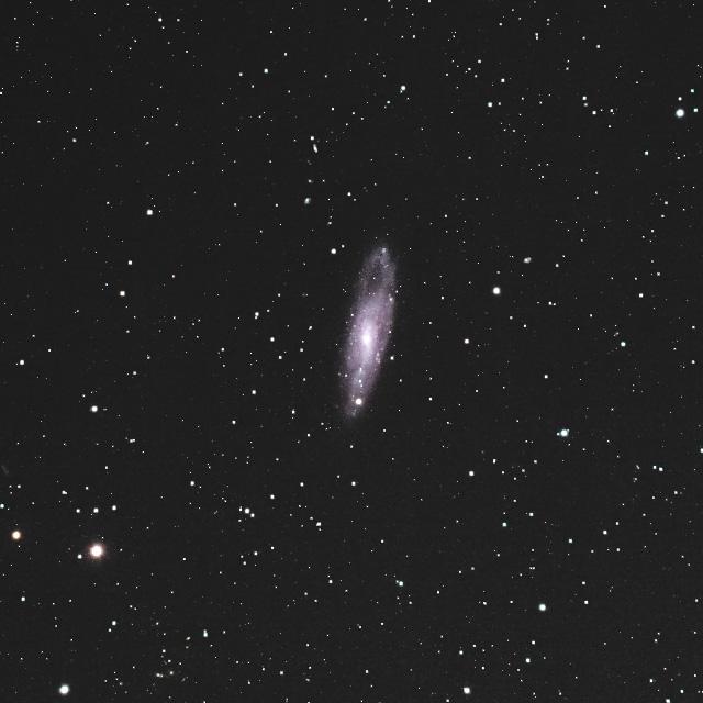 NGC247 (くじら座の系外銀河)