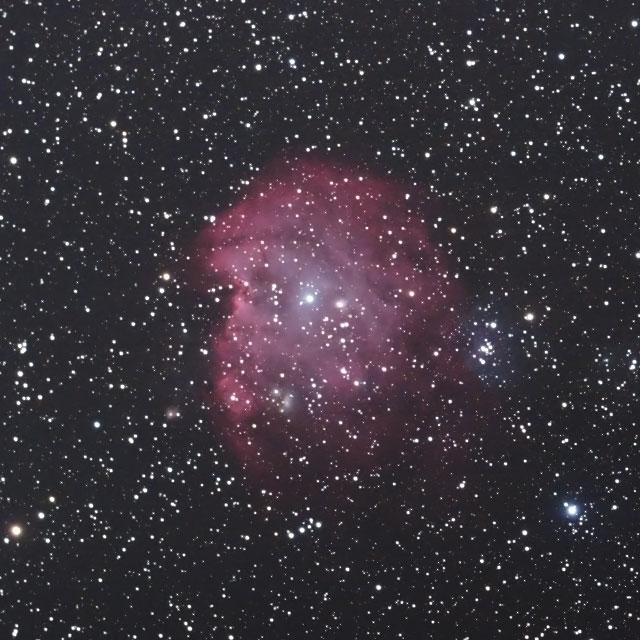 モンキー星雲